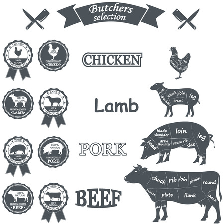 cut: vector diagram cut carcasses of chicken, pig, cow, lamb. Vector Illustration