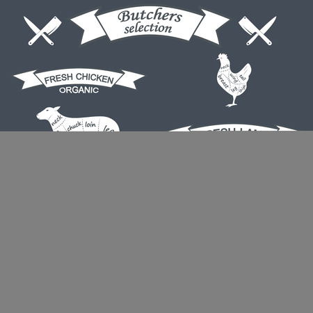 carcasses: vector diagram cut carcasses of chicken, pig, cow, lamb. Vector Illustration