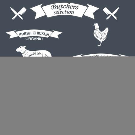 veal: vector diagram cut carcasses of chicken, pig, cow, lamb. Vector Illustration