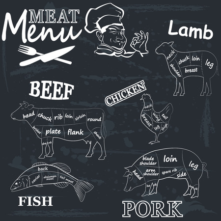 cut: Meat menu. Set of meat symbols, beef, pork, chicken, lamb. Vector Illustration