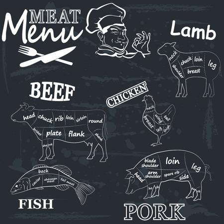 Menu vlees. Reeks vlees symbolen, rundvlees, varkensvlees, kip, lam. Vector Illustratie