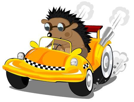 hedgehog the taxi driver Stock Vector - 16463994