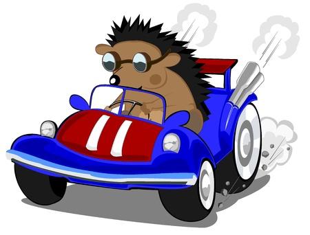 hedgehog the racer Stock Vector - 16527162