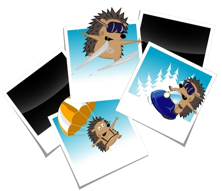 set of photos with funny hedgehog Stock Vector - 16944148
