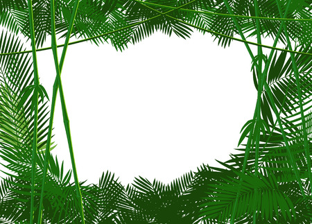 jungle foliage: jungle forest backgound for you text or simple image. vector illustration