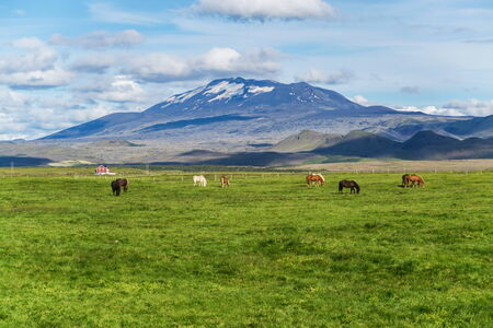 hekla: Hekla is a still active volcano, north of Hella