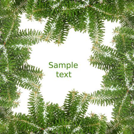 cocaina: Verde cornice di Natale con la neve rami ine