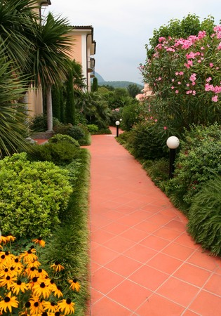 path to wealth: Footpath and plant in a residential in Europe