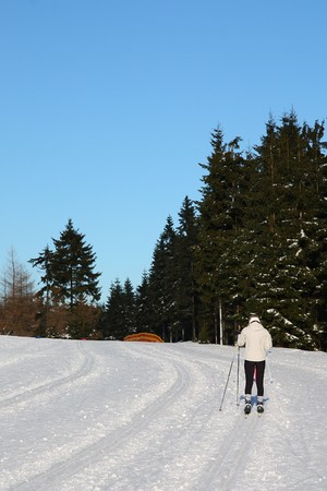 nordic - skating, cross country recreation in winter photo