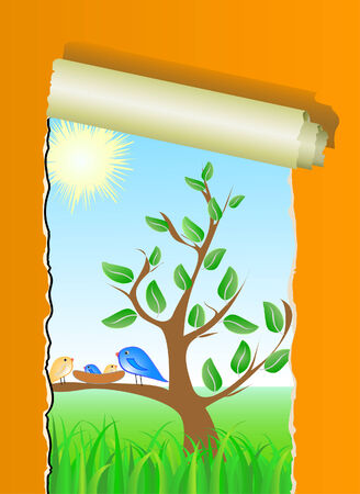nestling:  tree, birds and nestling, vector with ripped wallpaper Illustration