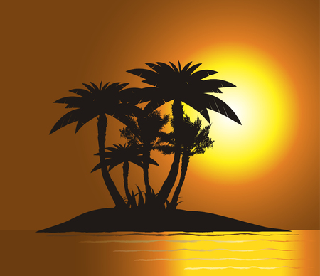 Sunset on the island with palms silhouette Vector