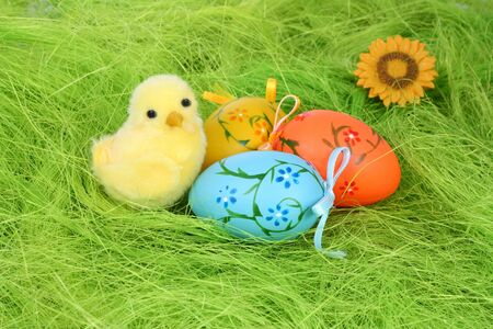 Painted Colorful Easter Eggs on green Grass and Easter chick Stock Photo - 6409319