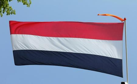 Dutch flag on blue sky  photo