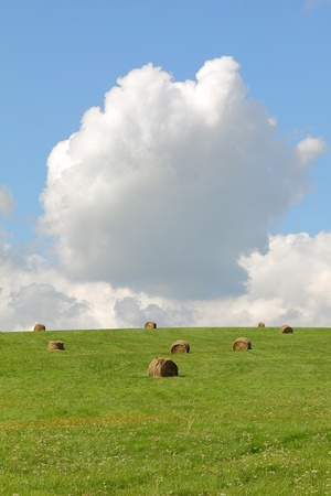 Green field  with hay bales and white clouds on blue sky photo