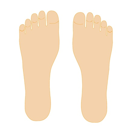 toe: Two foots isolated on white background