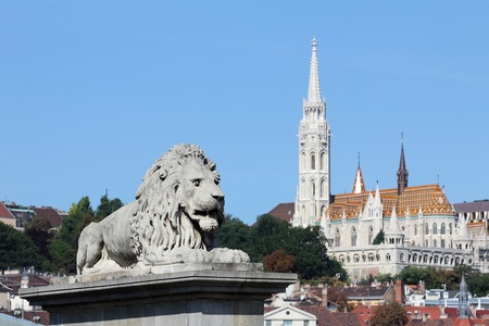 Budapest, lion statue decorating the Chain bridge Stock Photo - 11362998