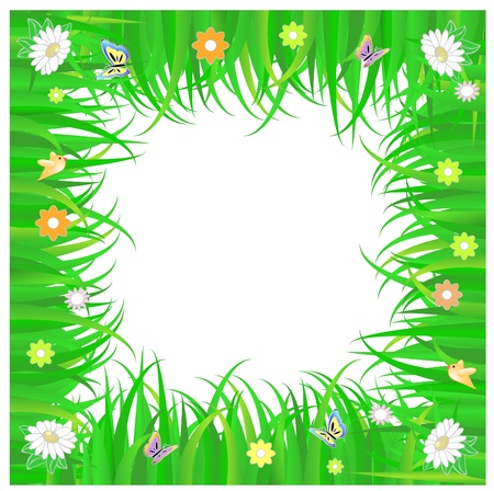 spring frame of green grass and flowers ,  with white copy space Vector
