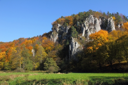 calcareous: autumn landscape with colorful forest and calcareous rocks, Ojcow, Poland, Europe