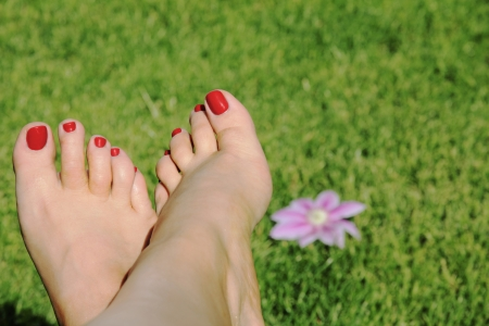 woman foot with red nails on grass background with flower photo