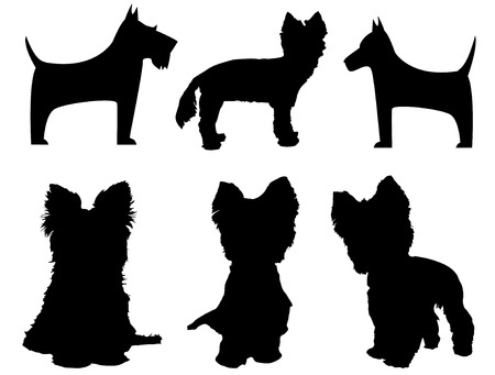 terriers: Small dog silhouettes   Yorkshire Terrier and Schnauzer  Illustration