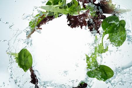 Greens mix water splash on white background Imagens