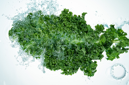 Kale Water Splash on white background Imagens