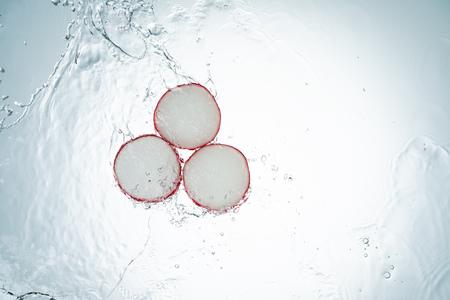 Freeze Motion Radish Water Splash on White Background Imagens