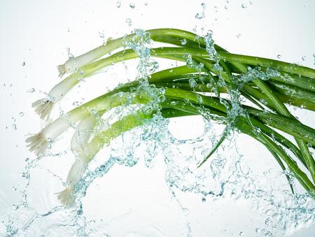 Leeks Water Splash on white background