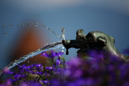 spout: Detail of little splashing spout looks like animal with purple flowers in the foreground Stock Photo