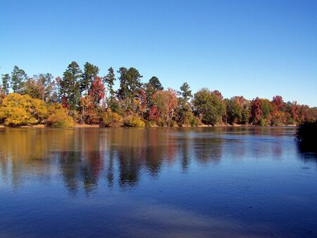 fall colors on the altamaha river