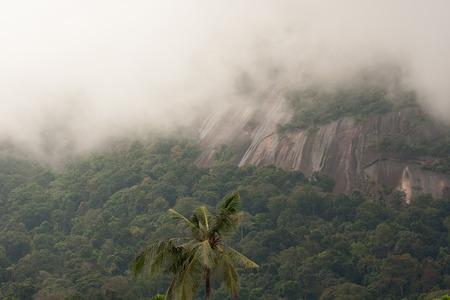 mountin: Malaysia.Hihg mountin in the morning fog.Cloudy,rainy day on Tioman island Stock Photo