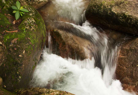 mountin: Malaysia.Tioman island,summer.Water cascade on the mountin stream and rocks washed by foamed water.