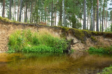 river view: Poland.Pomerania.Wild and unregulated Chocina river in summer.Horizontal view. Stock Photo