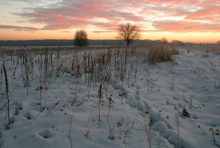 narew: Poland.Grudzie.Snow-covered meadow near the Narew river.Horizontal view. Stock Photo