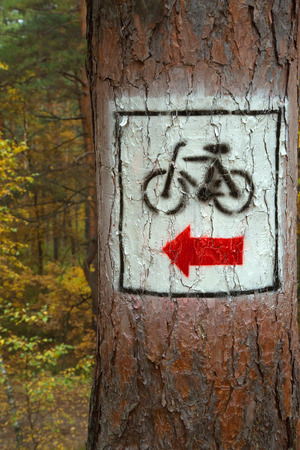 wooden trail sign: Poland, marking the cycling trail through the woods, painted on a pine tree.Vertical view.