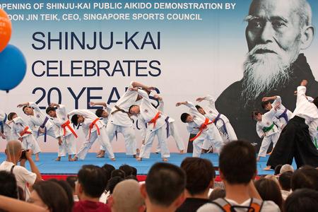 public demonstration: Public demonstration of the martial art Aikido Shinju-Kai on Orchard Road. Show children fight to celebrate the 20th anniversary of Shinju-Kaji celebrates.Editorial.Horizontal view.