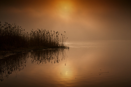 narew: Poland,very foggy,red colored  sunrise over the Narew river in summer with vintage effect.Horizontal view.