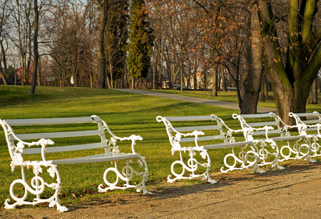 wilanow: Four white, stylized benches in a row on the avenue in the royal park in Wilanow in December,pland,warsaw , wilanow park.