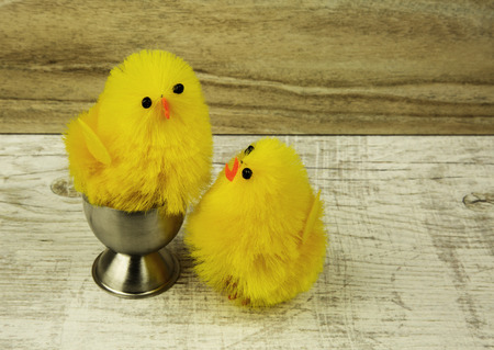christian young: Two yellow chickens Easter figurines, one in the egg carrier on the eggs and the other next to the old wooden table, decorating Easter. Horizontal, close view.