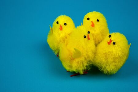 chick: Four yellow Easter chickens figurines close to each other on a blue background, easter decoration or poostcard. Close, horizontal view.