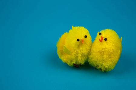 christian young: Two yellow Easter chickens figurines close to each other on a blue background,easter decoration or poostcard. Close, horizontal view.