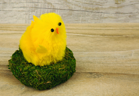 countertop: Easter figurines, yellow chicken in a nest with green moss on the background of the old wooden tabletop. Horizontal view.