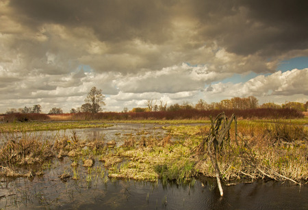 narew: Poland,spring flood waters of the river under dark,cloudy sky in april. Horizontal view.