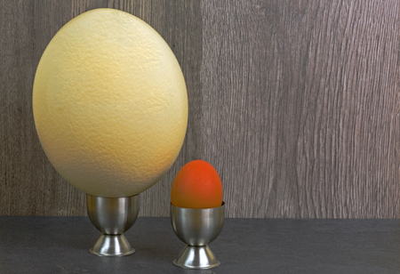 Ostrich egg and hen egg in the stands on a wooden background. Comparison of the size of eggs. Close, horizontal view.