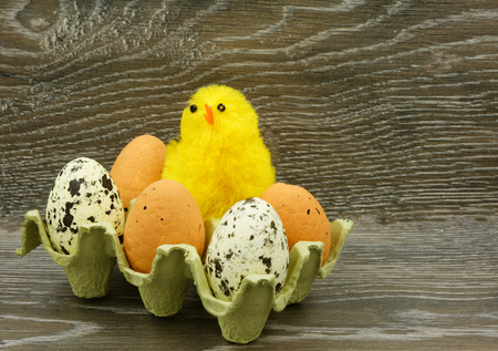 A yellow chicken mascot and several eggs in an egg mold on a wood counter.Interesting easter decoration.Horizontal view.