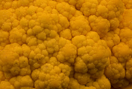 Closeup photo of yellow cauliflower with clearly visible details, interesting, abstract background. Horizontal view.