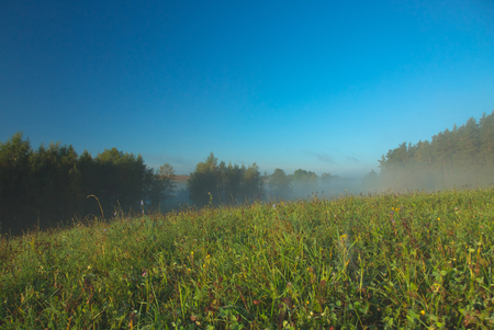 A beautiful October morning on meadows and clumps of the forest with a blue sky and a slightly hazy mist. Autumn in Poland. Horizontal view Stok Fotoğraf