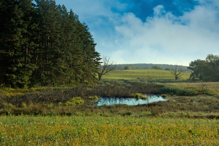 View on extensive meadows, a clump of forest and a wild pond in October.Wild Poland in autumn, Mazury district.Horizontal view.