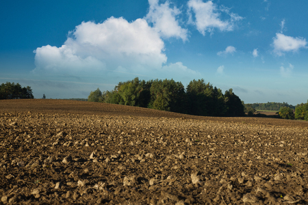Plowed fields among clumps of forest under blue sky and white clouds. October, autumn in Poland. Horizontal view