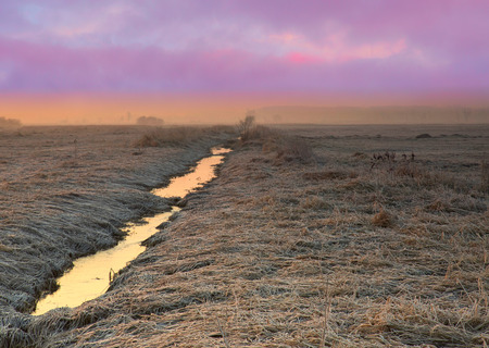 Meadows with stream covered with hoarfrost on a beautiful February morning, with a violet-pink sky and a delicate mist.Poland.Horizontal view.